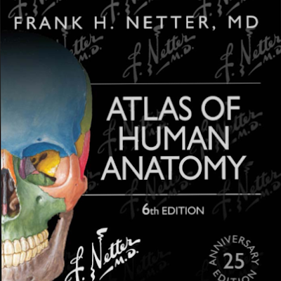Mcminns Abrahams Clinical Atlas Of Human Anatomy Pmc Batch 21