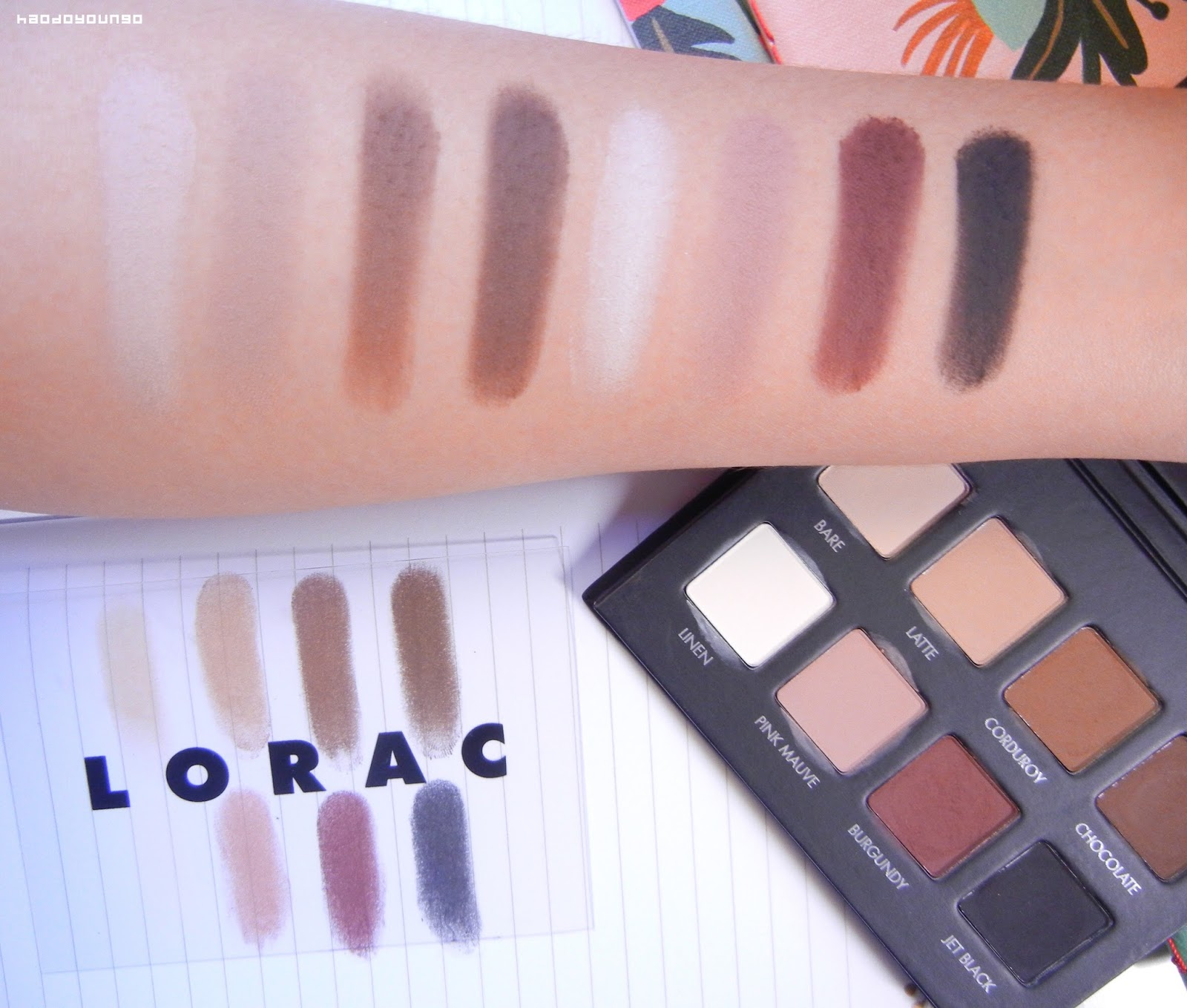 Review & Swatches: Lorac Pro Matte Palette | haodoyoungo