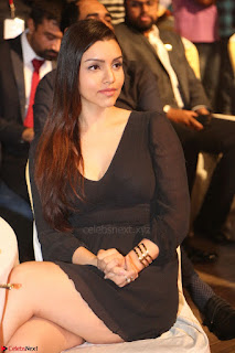 Kyra Dutta in black At Rogue Movie Audio Launch ~  005.JPG
