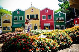 Linda visata das casas de Holambra com lindas flores coloridas em um enorme jardim á sua frente