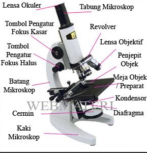 Bagian Bagian Mikroskop Ultraviolet Terlengkap