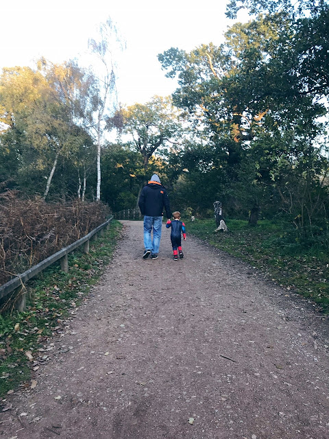 Little boy walking hand in hand with his Daddy on a woodland path