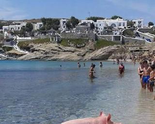 Συναγερμός στις Αρχές: Βρέθηκε σορός άνδρα σε παραλία της Μυκόνου
