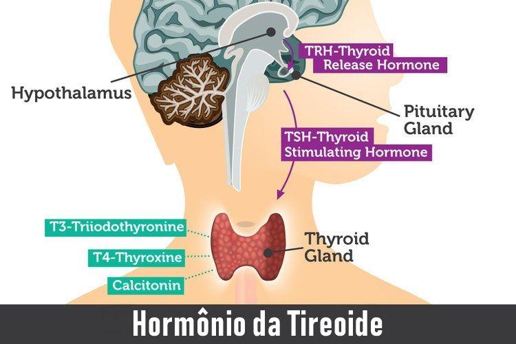 TSH Baixo: Causas, Sintomas e Como Afeta T3 E T4