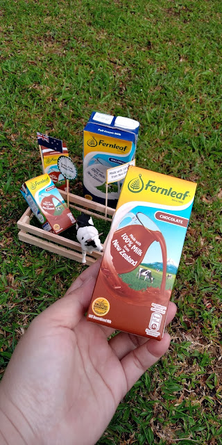 4 Sebab Susu Fernleaf UHT Menjadi Pilihan, susu fernleaf uht, fernleaf, susu,