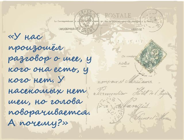 kak-nasekomye-povorachivajut-golovu-sheja-u-zhivotnyh-magija-biologii