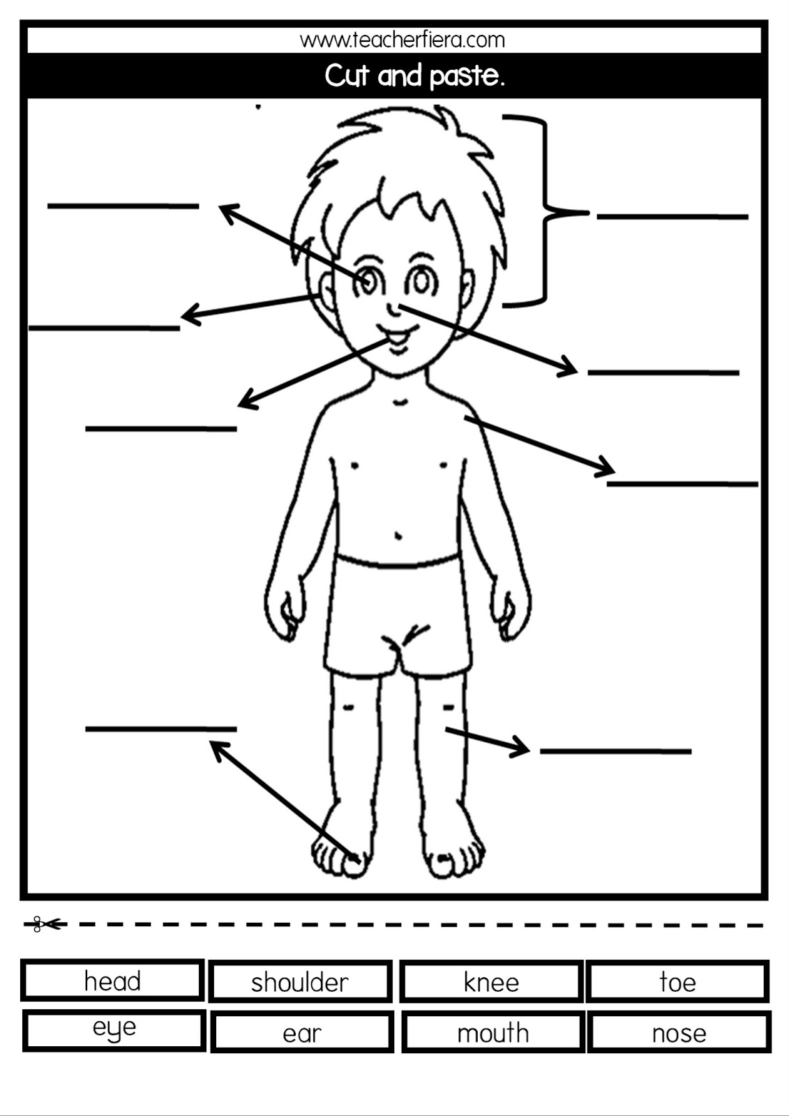 Teacherfiera Parts Of Body Flashcards S Amp Worksheets