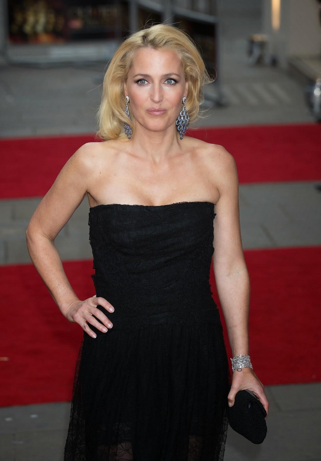 Gillian Anderson nude (18 foto) Video, Twitter, panties