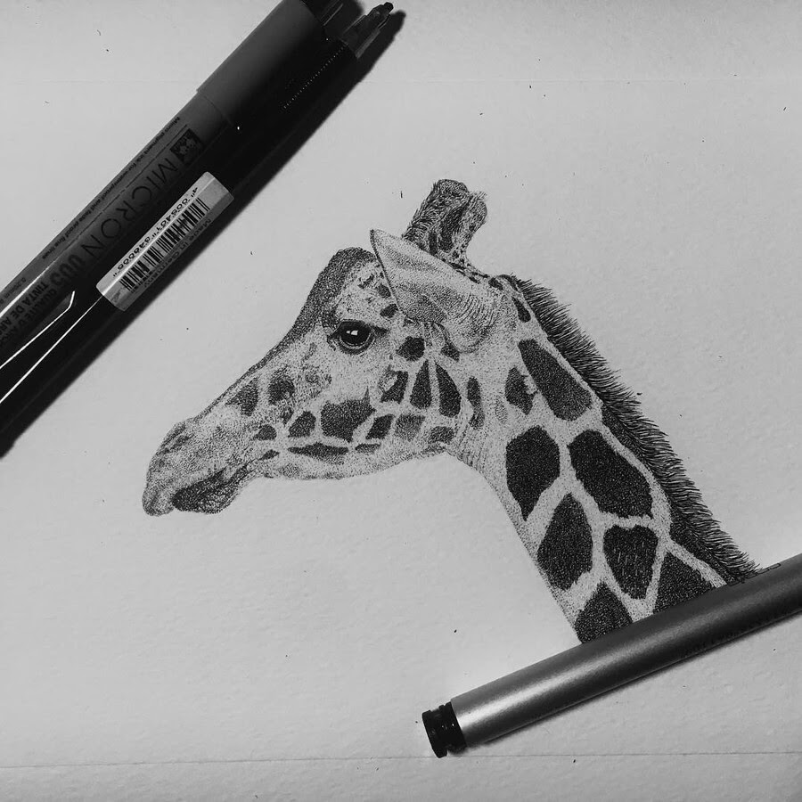 07-Giraffe-Paige-Bates-Stippling-Drawings-www-designstack-co