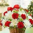Christmas Flowers Delivery With Gift Xperts
