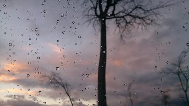 Los fantasmas y la lluvia de Mar Goizueta
