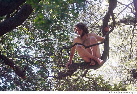 The Naked Tree 74