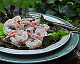 Cold Shrimp with Creamy Dill Sauce & Capers