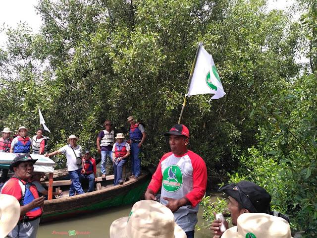 belawan mangrove tour