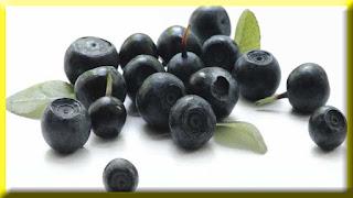 gambar buah acai berry