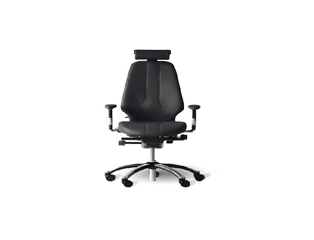 best buy ergonomic office chair herniated disc for sale