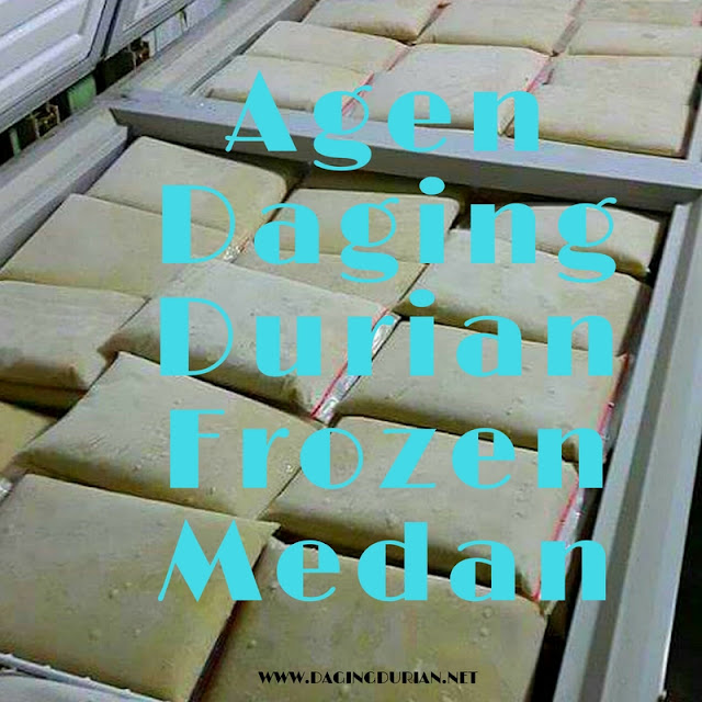 pabrik-daging-durian-medan-terlegit-di-pesawaran