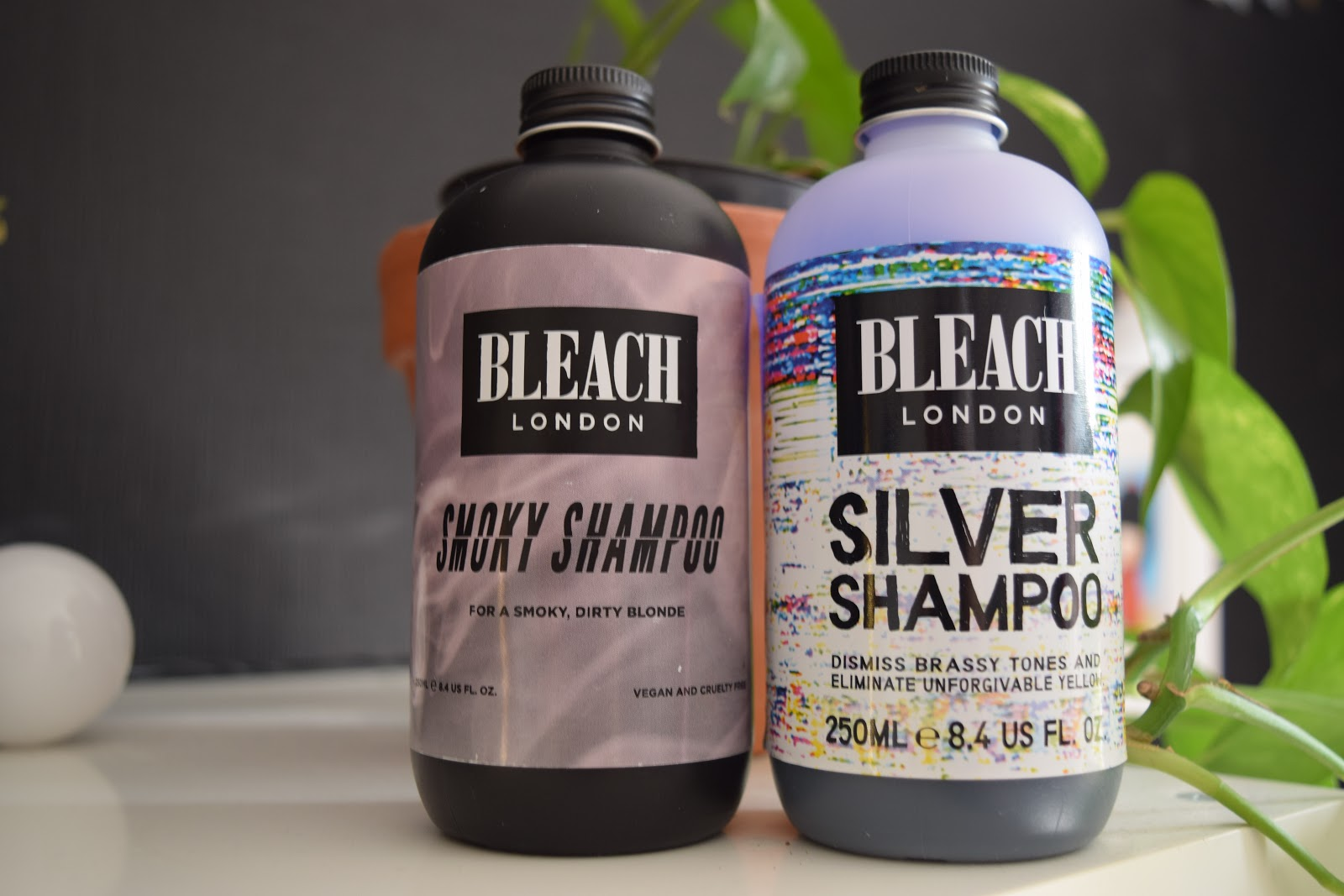 Bleach London silver shampoo and smoky shampoo with pothos plant