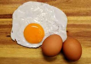 Kandungan Nutrien Di Dalam Telur Ayam