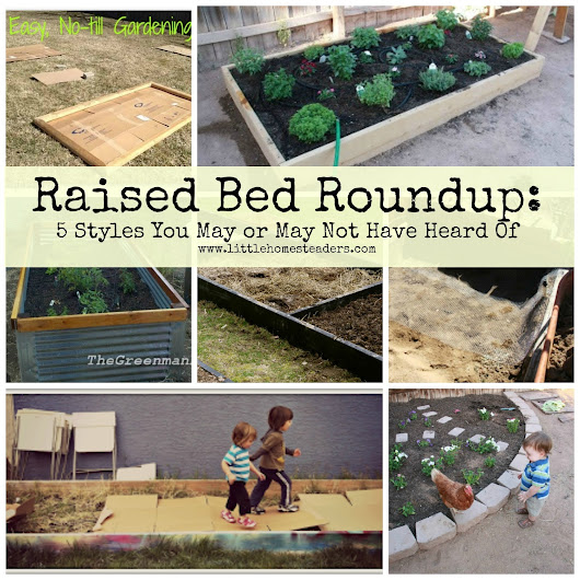 Raised Bed Roundup: five styles you may or may not have heard of