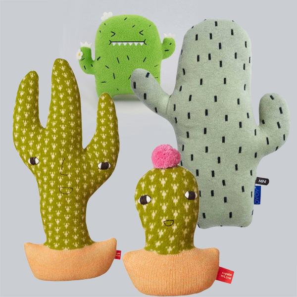 knuffelcactus