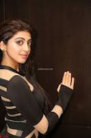 Pranitha Subhash in a skin tight backless brown gown at 64th Jio Filmfare Awards South ~  Exclusive 111.JPG