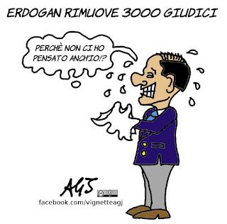 turchia erdogan, giudici, generali, golpe, berlusconi, vignetta, satira