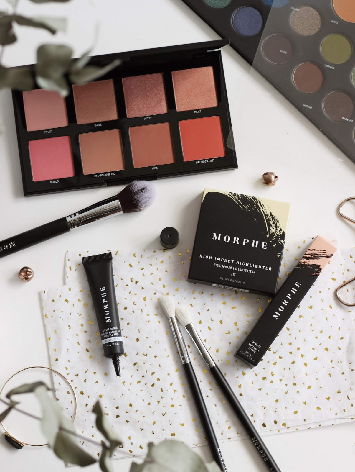 Morphe First Impressions