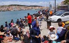 migrant overcrowding