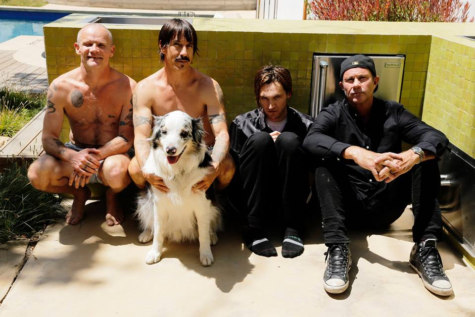 essay on chili peppers The energetic singer of the alternative rock group, the red hot chili peppers, anthony kiedis was born on nov 1, 1962, in grand rapids, michigan kiedis' godfather was sonny bono, of sonny & cher fame his parents split when anthony was three after getting into trouble at school, he moved to.