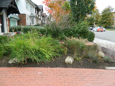Paul Jung Gardening Services Midtown Toronto Fall Garden Cleanup after