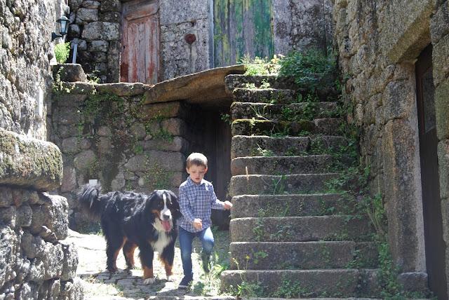 Niño con perro (botero de Berna) junto a las escaleras del patio de una casa en Monsanto