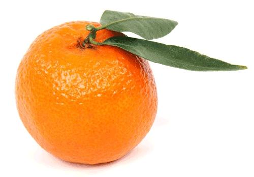 Фото мандарина на белом фоне