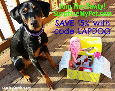 Penny thiinks you should #JoinThePawty at #SurpriseMyPet - she knows you'll love it!  SAVE 15% with #coupon code LAPDOG - your pup will love the goodies! #LapdogCreations ©LapdogCreations