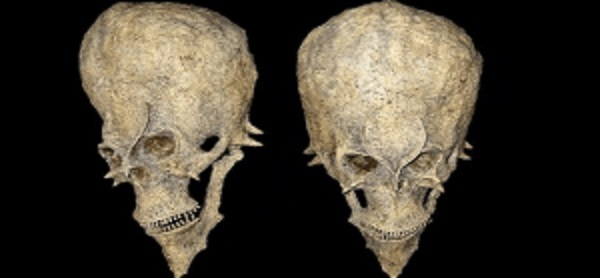 Found alien skull in Africa? This could change the history of humanity