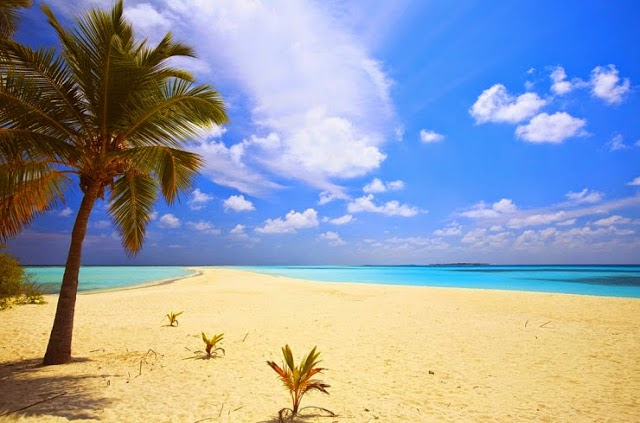 4. The Bahamas. - Summer Is For Relaxing.... These 10 Beaches Will Cut Off Your Breath!