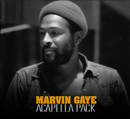 Producer Universe: Marvin Gaye Acapella Pack