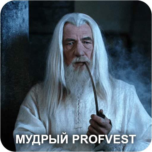 Мудрый PROFVEST