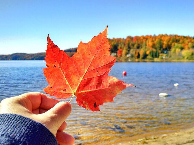 Perfect Fall Weekend: Kingston Edition
