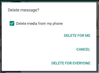 Bisa Delete for Everyone