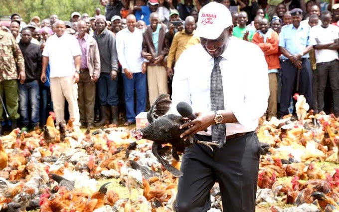Four arrested as police probe theft of 10 crates of eggs at Kenyan Deputy President's home