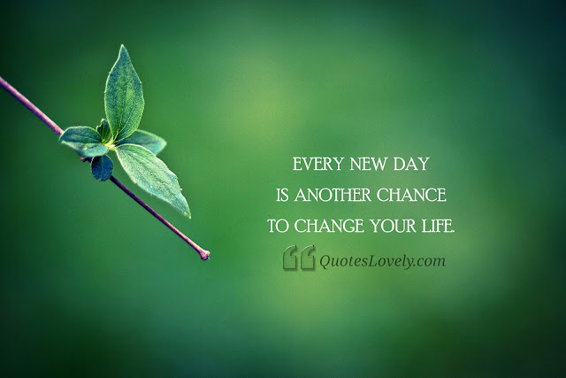 Take a chance and change your life