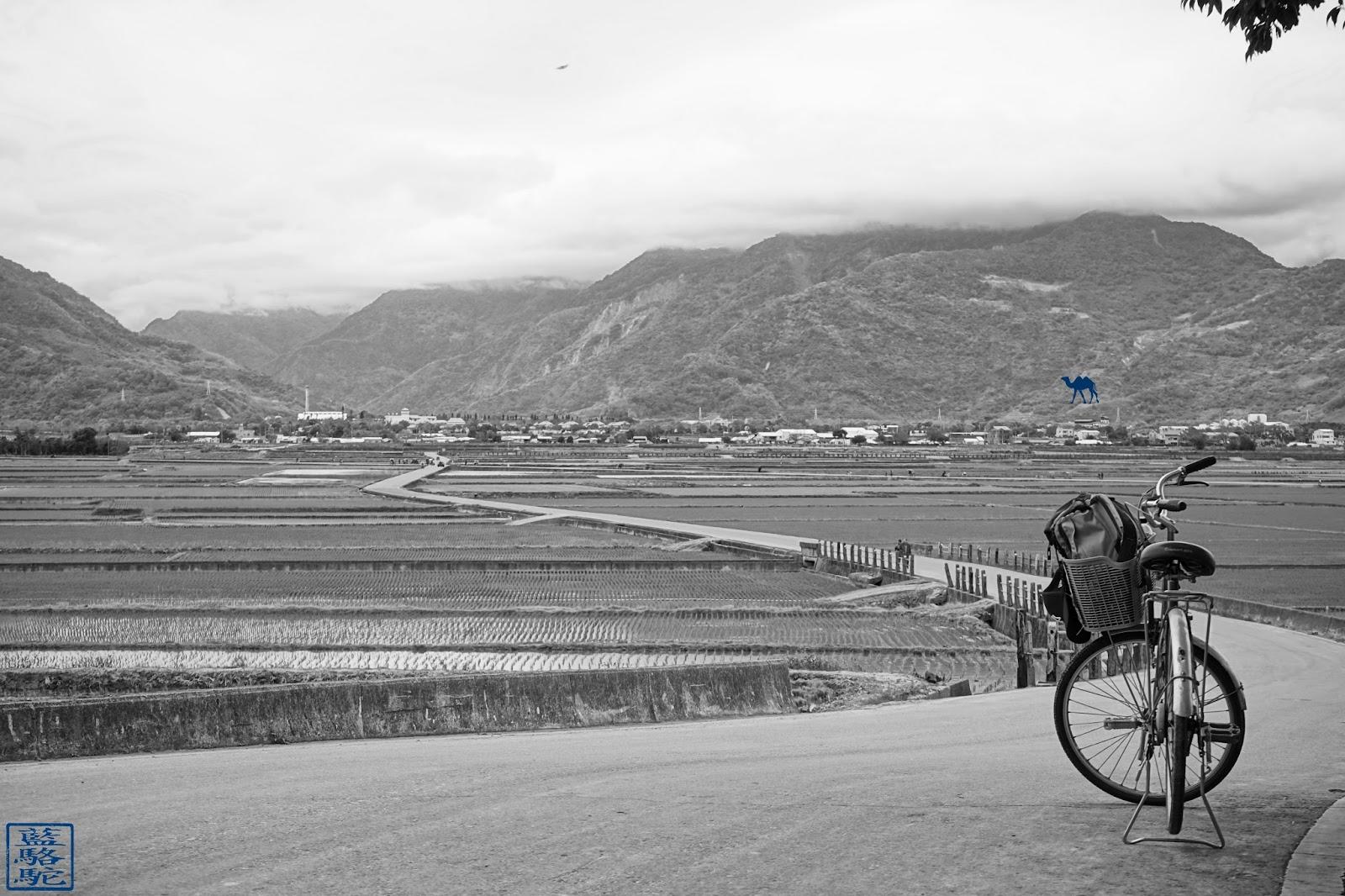 Le Chameau Bleu - Riziere et Velo à ShiChang - Voyage à Taiwan