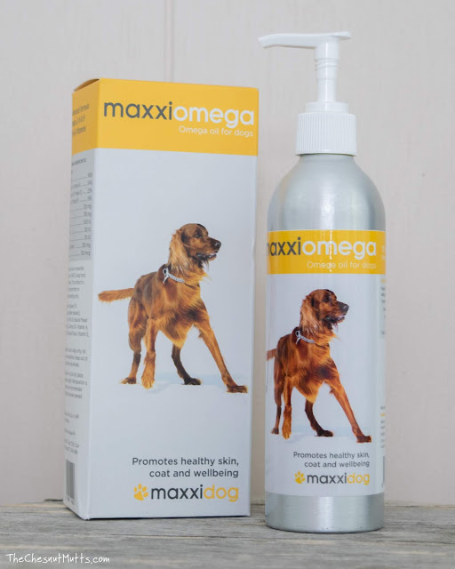 maxxipaws maxxiomega dog supplement