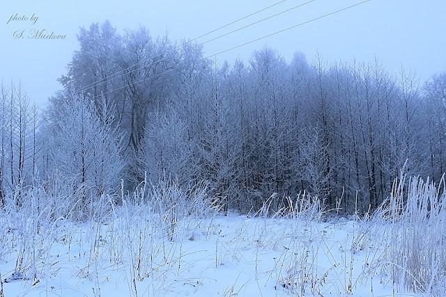 skazochnaya-zima