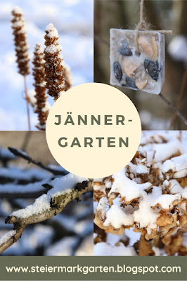 Jänner-Garten-Pin-Steiermarkgarten