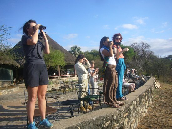 Kenya Luxury Safari