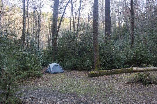 Campsite #58 on Deep Creek