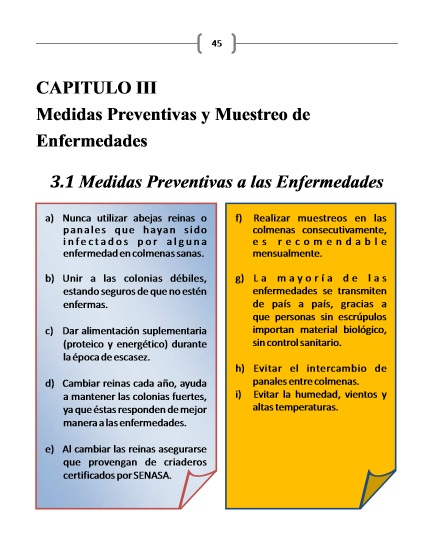 MANUAL DE ENFERMEDADES APÍCOLAS - BOOK OF BEEKEEPING AFFLICTIÓN.