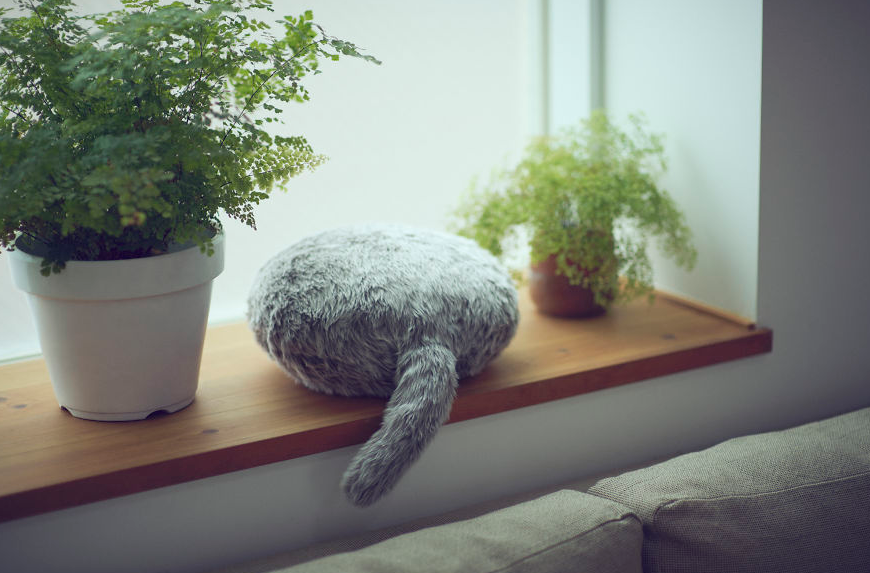 """This Cat-Inspired Robot From """"Japan"""" Can Help To Cope With Anxiety"""